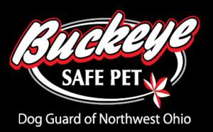 Buckeye logo tile